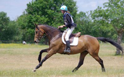 Équitation – Études en internat